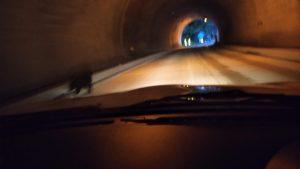 トンネルに熊走ってる